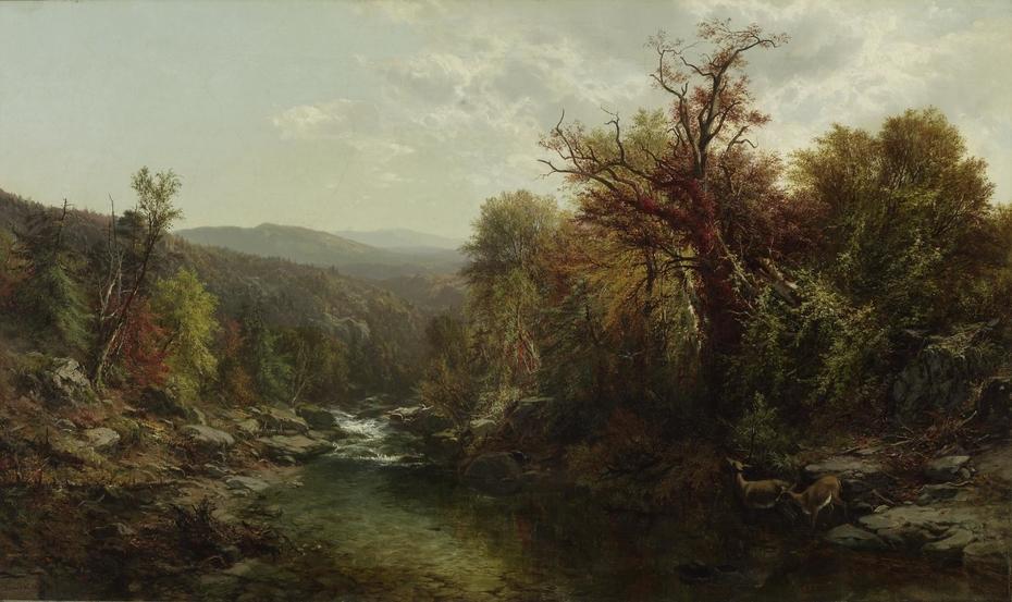 A Stream in the Adirondacks