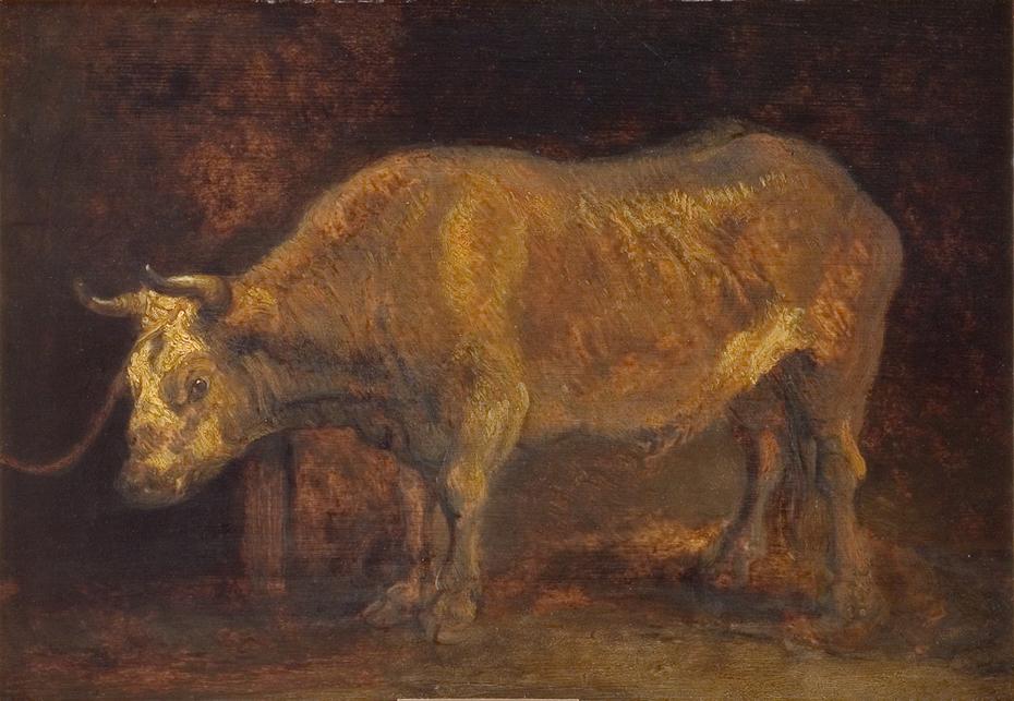 An Ox Standing