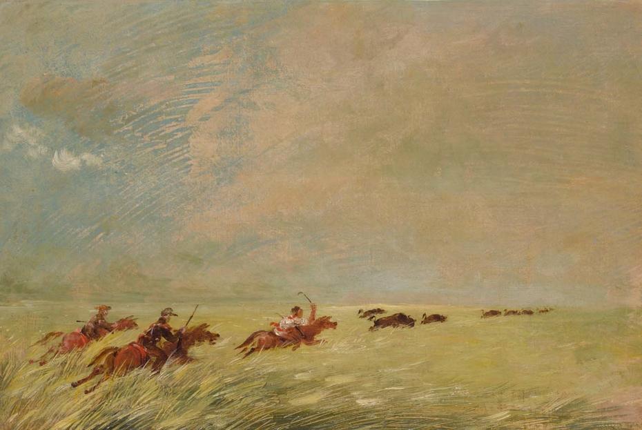Bogard, Batiste, and I Chasing Buffalo in High Grass on a Missouri Bottom