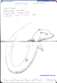 Carnet Bleu: Encyclopedia of…shark, vol.XIV p06 - by Pascal