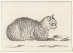 Liggende kat, naar links, voor een schotel