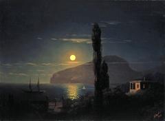 Moonlit night in the Crimea.