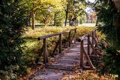 Old Wooden Bridge In Winterton Park