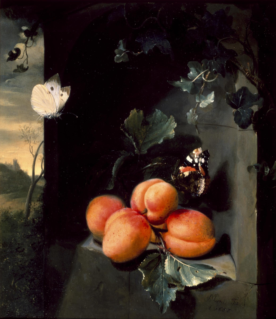 Still Life with Apricots and Butterflies