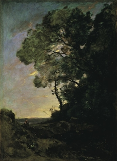 Tree landscape (evening)