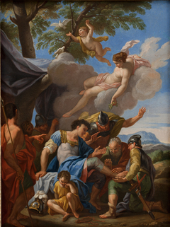 Venus Bringing Simples for the Wounded Aeneas