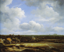 View of the Plain of Haarlem with Bleaching Grounds