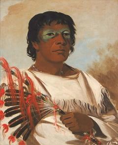 Wah-pe-kée-suck, White Cloud (called the Prophet), Adviser to Black Hawk