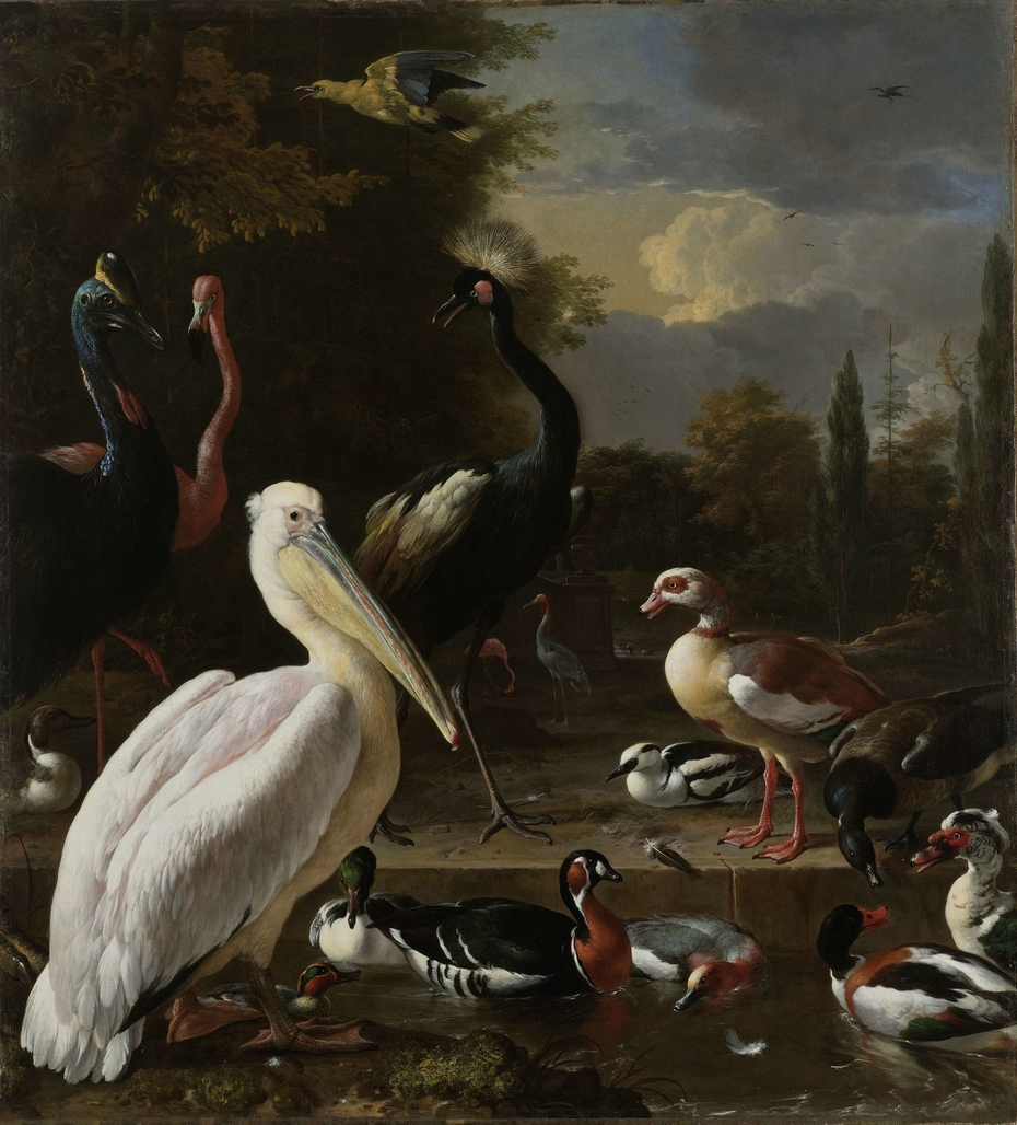 A Pelican and other Birds near a Pool, Known as 'The Floating Feather'