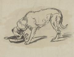 Etende hond