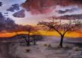 Namibia Sunset Trees