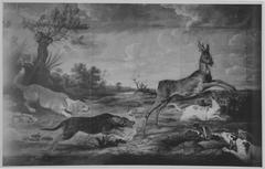 Rehbock von Hunden verfolgt