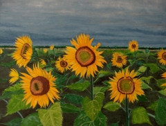 Stormy Sunflowers