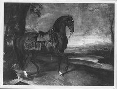The Favourite Horse of the Emperor Ferdinand