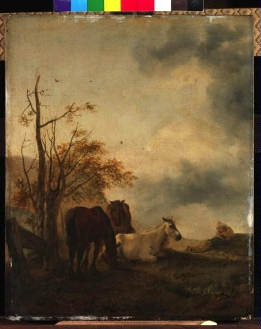 Three Horses in a Meadow