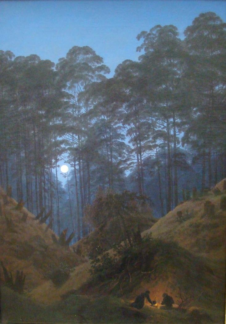 Waldinneres bei Mondschein