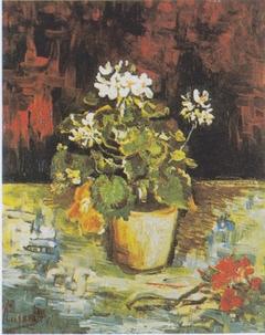 Geranium in a Flowerpot