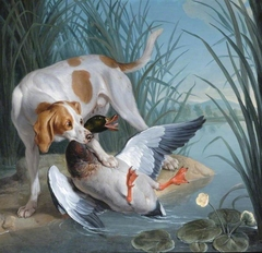 A Dog and a Wild Duck