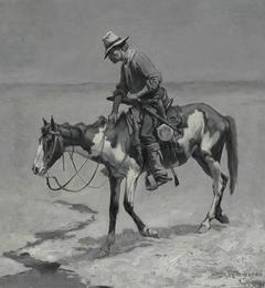 A TexasPony