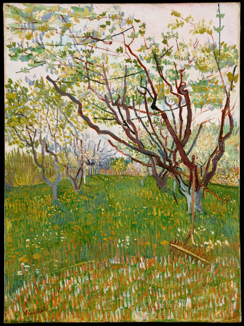 The Flowering Orchard
