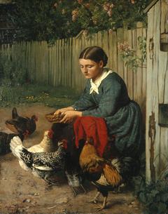 Girl feeding chicken