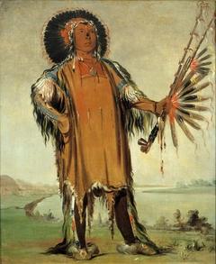 Ha-na-tá-nu-maúk, Wolf Chief, Head Chief of the Tribe