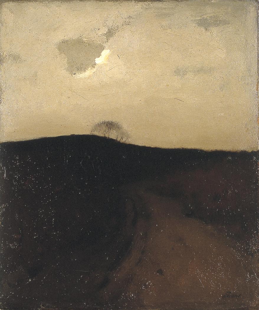 Heidelandschap bij avond