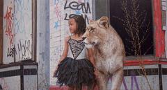Indie Lion