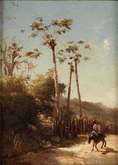 Landscape from the Antilles, Rider and Donkey on a Road