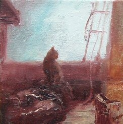 ships cat