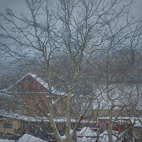 Snowfall. Irpen