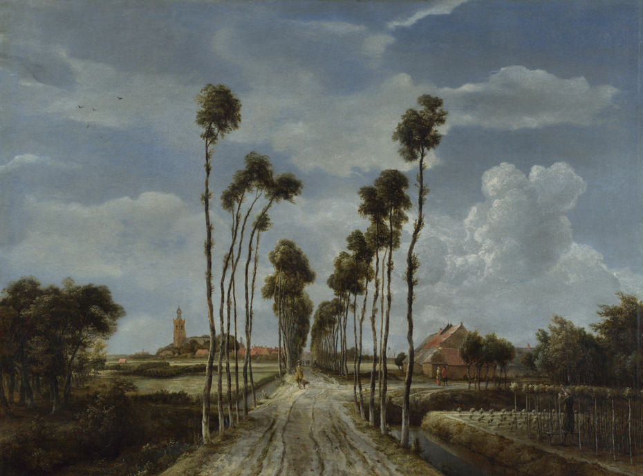 The Avenue at Middelharnis