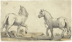 Twee stapvoets lopende paarden, van opzij gezien