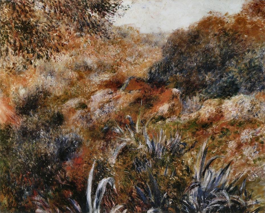 Paysage algérien, le ravin de la femme sauvage