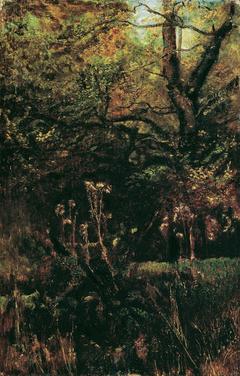 Waldlichtung mit Disteln