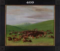 Buffalo Chase, a Surround by the Hidatsa