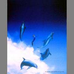CABRIOLES AVEC LES DAUPHINS, Capering with the dolphins - by Pascal