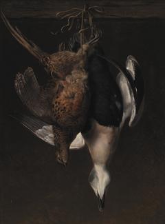 Game. A Pheasant and an Eider