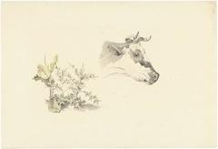 Kop van een koe en twee planten