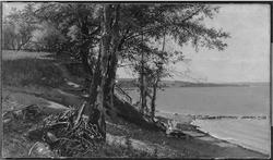 On the Lake Shore
