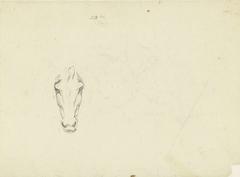 Paardenkop, van voren gezien