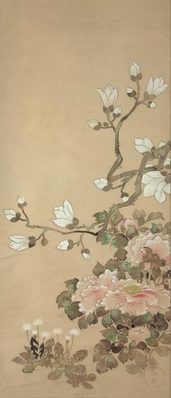 Peonies, Magnolia, and Dandelions
