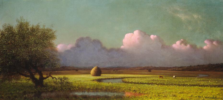 Sunlight and Shadow: The Newbury Marshes