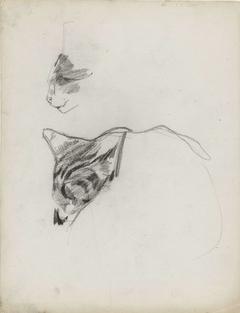 Twee studies van een kat