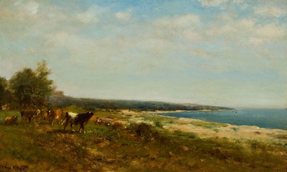 Cattle along the Waterside