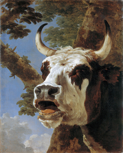 Head of a lowing Ox