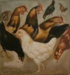Κότες
