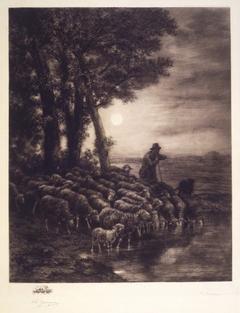 ''Moonlight''