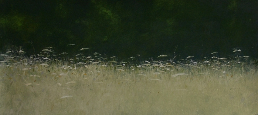 pré fleuri / flowery meadow