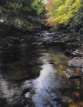 River at Lady Bagots